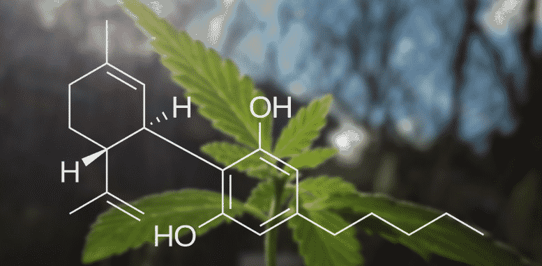 How can cbd oil benefit you