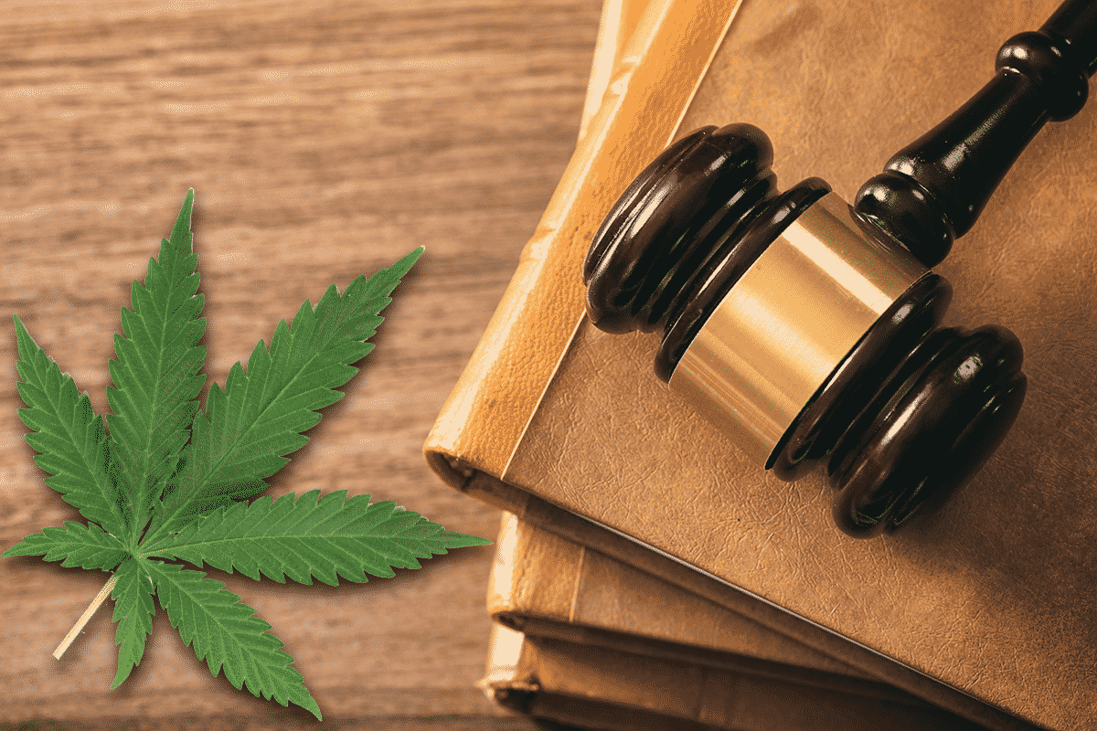 The Legality of CBD in the US and its Effects