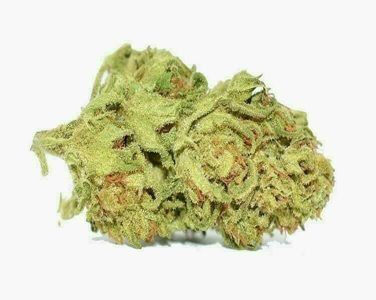 Best cbd strains valentine x_Herban Planet