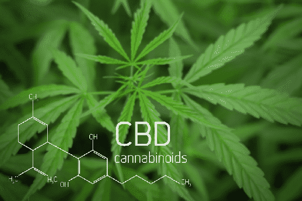 CBD is changing the world