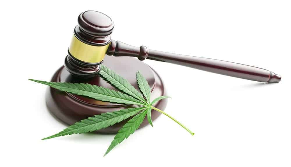 CBD laws and regulations