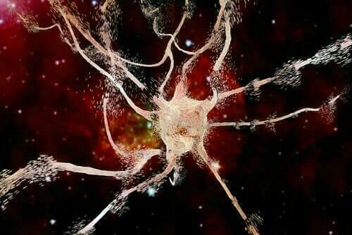 CBD prevents neurodegenerative disorders