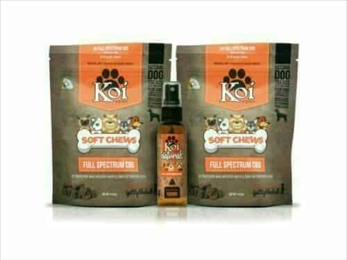 Koi cbd pets holiday combo pack