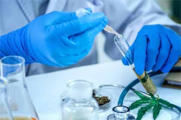 CBD lab reports
