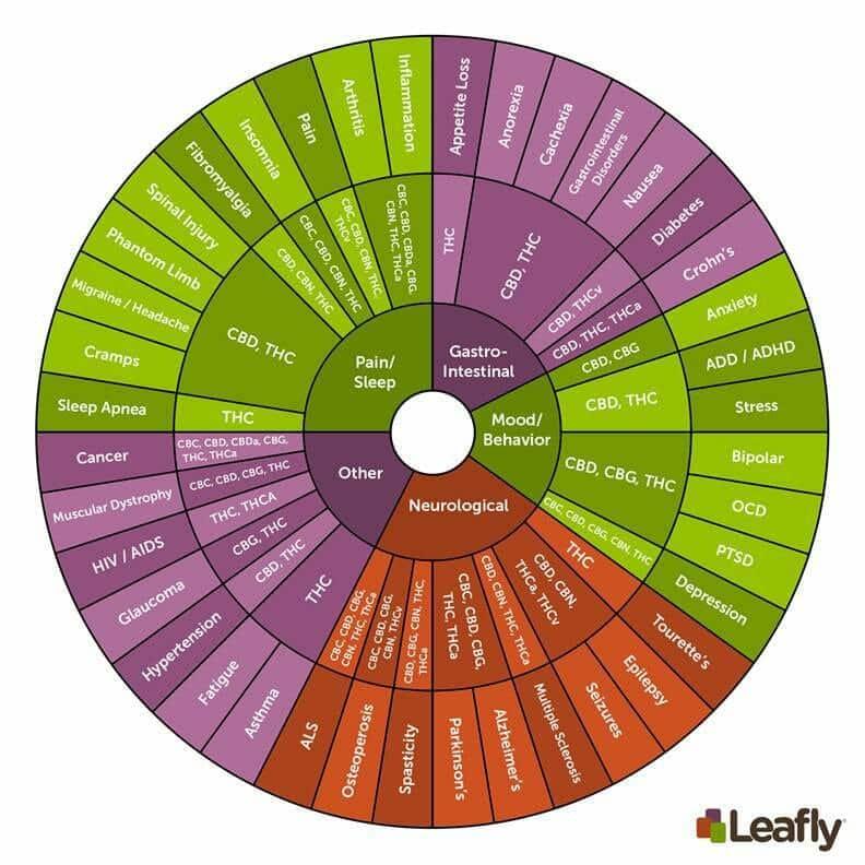 Leafly cannabinoid spectrum