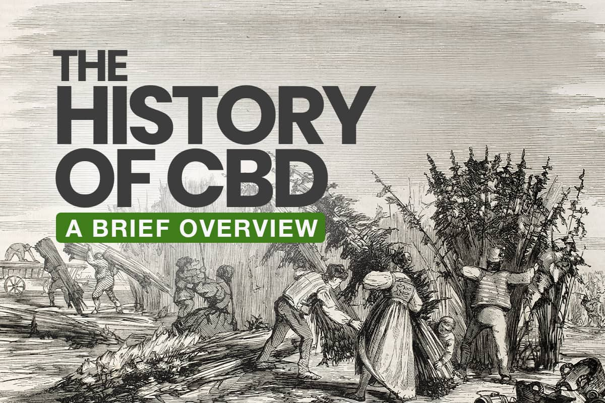 The History of CBD | CBD Origin