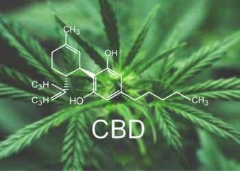 CBD Stands for Cannabidiol | CBD Origin